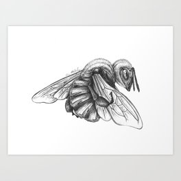 Things We Need (Bee Detail) Art Print