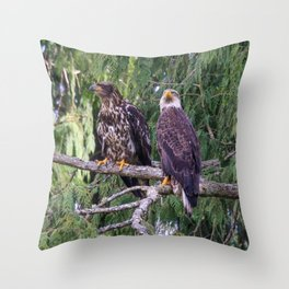 Young Eagles Throw Pillow