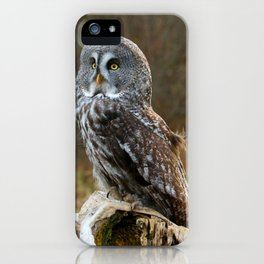 Waiting for night to fall iPhone Case