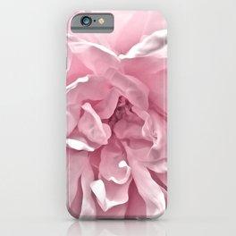 Pink Blush Rose 2 iPhone Case