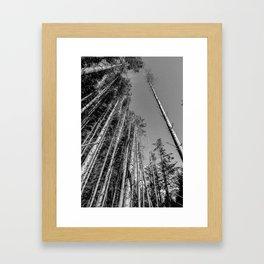 I Stand Alone Framed Art Print