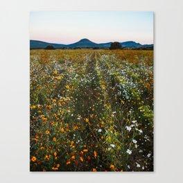 Canatlan Canvas Print