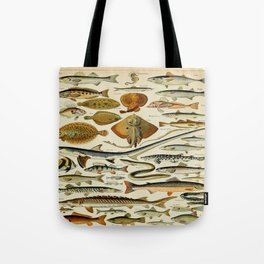 Fish Vintage Scientific Illustration French Language Encyclopedia Lithographs Educational Diagrams Tote Bag