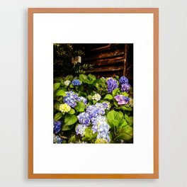Flowers in the south Framed Art Print