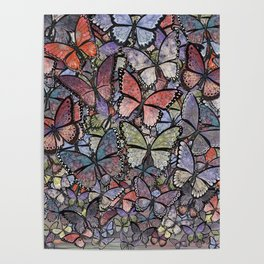 butterflies galore grunge version Poster