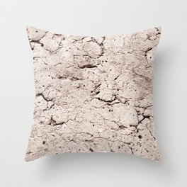 Old Stone Wall - textured II Throw Pillow