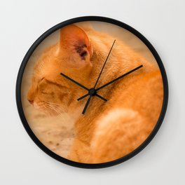 Orange Cat Is Resting On The Terrace  #decor #society6 #homedecor Wall Clock
