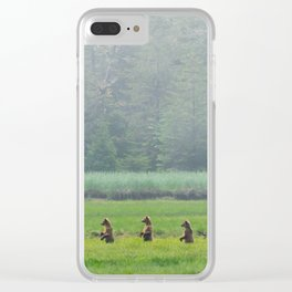 Looking for Goldilocks Clear iPhone Case
