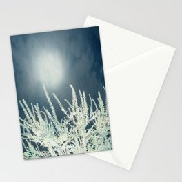 Silver Moon Stationery Cards
