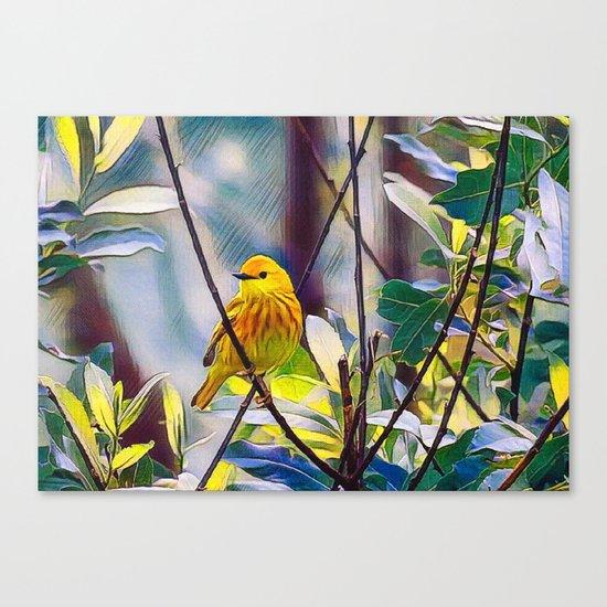 Sweet Yellow Warbler Canvas Print