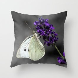 Cabbage butterfly on lavender, monochromatic bokeh background Throw Pillow