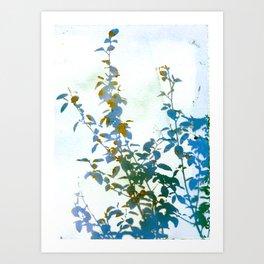 Botanical Bouquet Art Print