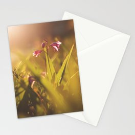 Morning Flowers (2) Stationery Cards