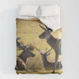 Reindeers of Scotland Comforters