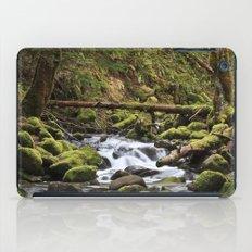 Paradise Creek III iPad Case