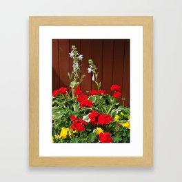 Lovelies Framed Art Print
