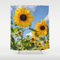 sunflowers Shower Curtains featuring Sunflowers by David Tinsley