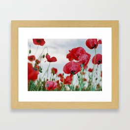 Field of Poppies Against Grey Sky Framed Art Print