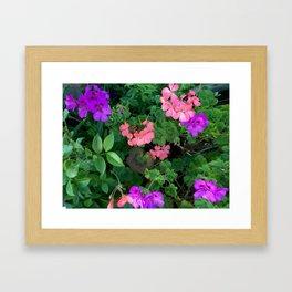 Pink and purple garden Framed Art Print