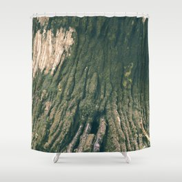 Passing Time in Victorian Afternoon Shower Curtain