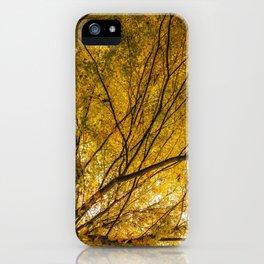 Incandescence iPhone Case