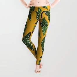 Begonia maculata pot watercolor Leggings