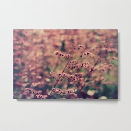 Pink and Fuzzy Metal Print