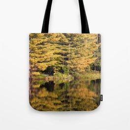 Fall in the Adirondacks, upstate NY Tote Bag