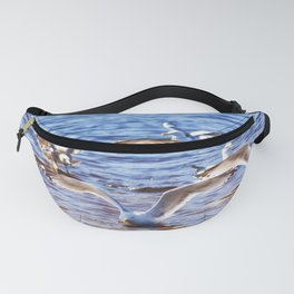 Landing Party Fanny Pack