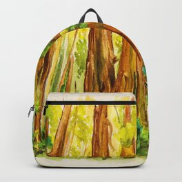 Redwood National Park Backpack