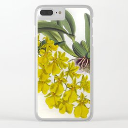 Little Yellow Vintage Orchids Lindenia Collection Clear iPhone Case