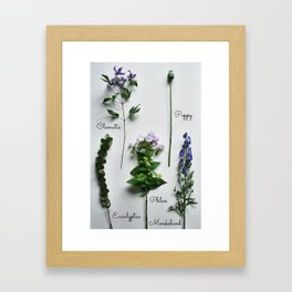 Botanical photography, purple summer flowers Framed Art Print