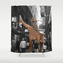 Safary in City. African Invasion. Shower Curtain