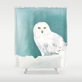 Arctic Eyes Shower Curtain