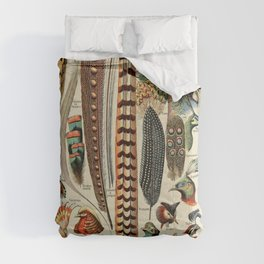 Adolphe Millot- Vintage Feather Print Comforters