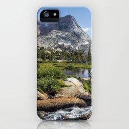 Vogelsang Playland iPhone Case