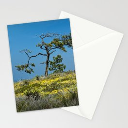 A Torrey Pine on the Cliffs at Torrey Pines State Natural Reserve Stationery Cards