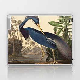 John James Audubon - Louisiana Heron Laptop & iPad Skin