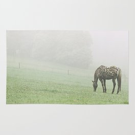Leopard in the mist.  Rug