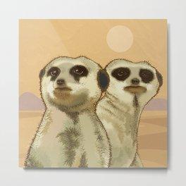 Couple of Meerkats Metal Print