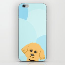 Poodle Doodle iPhone Skin