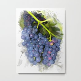 Concord grape Metal Print