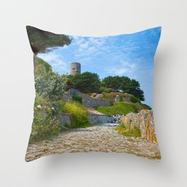 Once Upon a Guernsey Path Throw Pillow