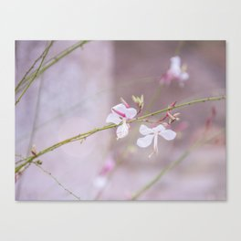 Love was when I loved you Canvas Print
