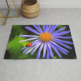 The runway of a ladybird Rug