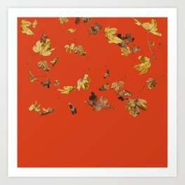 Falling Autumn Leaves (Maple) Art Print