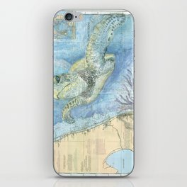 West Palm Beach Turtle iPhone Skin