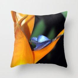 Flor Ave del Paraiso Throw Pillow