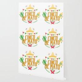 Cinco De Mayo Mexican Party Cinco De Mayo Costume Wallpaper