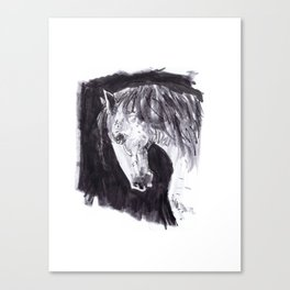 NEIGH! Canvas Print